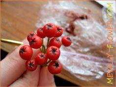 Рябина из холодного фарфора – мастер-класс   Metally Flower