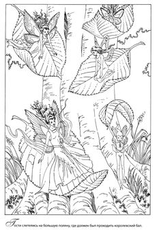 Elf Fairy Fae Wings Fantasy Elves Faries Sprite Nymph Pixie Faeries Hadas Enchantment Forest Whimsical Whimsy Mischievous Coloring Pages Colouring Adult