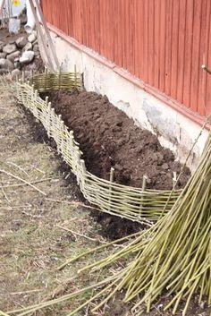 Natural Fence, Natural Garden, Backyard Projects, Outdoor Projects, Amazing Gardens, Beautiful Gardens, Edible Garden, Garden Crafts, Small Gardens