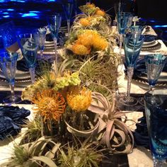 Air plants table setting