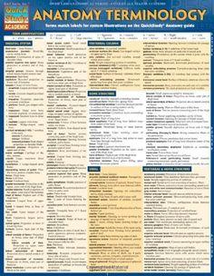 Anatomy Terminology by Inc. BarCharts, http://www.amazon.com/dp/1423216326/ref=cm_sw_r_pi_dp_SZEStb12WXPZN $5.35