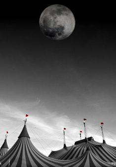 The circus is coming. The moon shines light on the tent, the tents the secrets, the players of the game , where the secrets are hidden. Dark Circus, The Circus, Circus Book, Circus Tents, Circus Art, Clowns, Le Bateleur, Circus Aesthetic, Night Circus