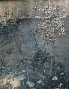 Monarda by Fawn Potash, Photograph, encaustic and oil, solarized, etched lines on wax with paint rubbed in