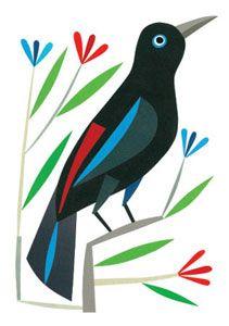Urubbu #illustration #birds