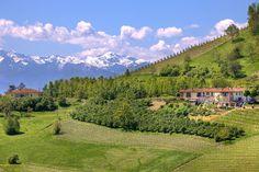 Wieczór północnych Włoch czyli kolację i degustację win z tego regionu Italii organizujemy 22, 23 i 24 maja. Więcej informacji tutaj: www.pastaibasta.pl/o-wieczorach-tematycznych-przeglad/smaki-polnocnych-wloch