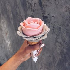 Gelato Glowers Ice-cream - i Creamy in Sydney, Australia