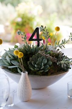 Succulent Wedding Centerpiece With Table Number Surrounded By Yellow Craspedia In Bud Vases