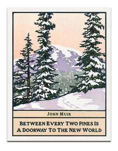"""**Yoshiko Yamamoto is one of the premier block printers in the Arts and Crafts style  :   """"Pines"""""""