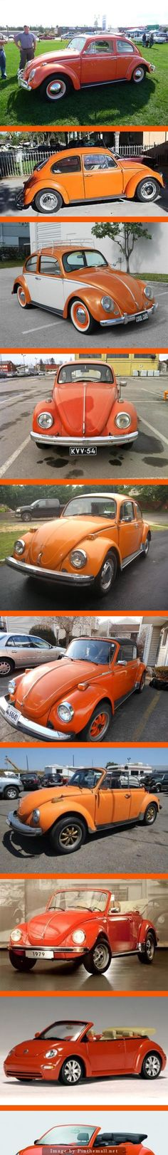 VW ORANGES: Top to Bottom - 63, 67, 65, 71, 74, 76, 76, 79, New Beetle, 2010 New Beetle -