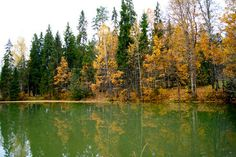 beautiful autumn trees on the bank of the quiet river Stock Photo