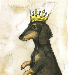 Dachshund King