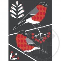 Punatulkku-joulukortti
