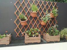 Kräuter Garten für den Windschutz diy