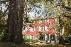 Im Nationalpark Cevennen stellt das Château d'Ayres ein schönes Anwesen in einem 6 Hektar grossen Park dar und wird Sie bestimmt verzaubern. Kunst des Reisens mit Bontourism®.