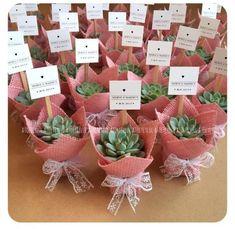 Mini Sukulent, Mini Succulent, Kaktus, Kaktus, Hochzeitsbevorzugungen, Hochzeitssüßigkeiten, Hochzeitsgeschenk, Hochzeit, Babyshower-Geschenke, Weihnachten, Valentinstag, ... - Seyhan Efe - Diy