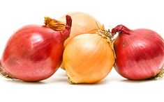 Onion is a popular herb, but it's also packed with medicinal benefits. Learn more about onion, from onion recipes to growing it and much more. Grape Nutrition, Grape Plant, Grape Seed Extract, Onion Recipes, Red Grapes, Grape Juice, Homeopathic Remedies, Body Detox, Natural Forms