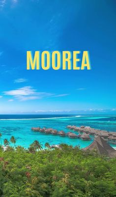 French Polynesia has reopened its borders to international tourists! Why travel and choose to spend your honeymoon in French Polynesia in 2020 - the best honeymoon ideas for couples to enjoy a vacation and travel together in islands like Tahiti, Bora Bora, Moorea, and other French Polynesian islands #traveldream #beautifulvacations #traveltogether Best Tropical Vacations, Tahiti Vacations, Romantic Vacations, Romantic Travel, Beautiful Vacation Spots, Beautiful Places To Travel, Cool Places To Visit, Top Places To Travel, Best Places To Honeymoon