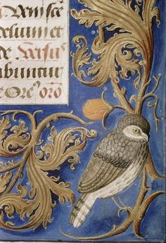Bodley MS. Douce 311 Her creaturely friends gather together to get through the winter, the predators hunt at night for them all
