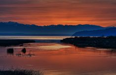 Pre Winter Sunset - Fur Island - Skagit Wildlife - Landscape Photography - Photography - Fine Art Photography - Rustic Home Decor - 4 X 6+