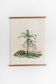 Scenery consisting of Atalea Compta and Mauritia Armata palms from Historia Naturalis Palmarum by Carl. Botanical Illustration, Botanical Prints, Botanical Drawings, Floral Prints, Victorian Terrace Interior, Carl Friedrich, Victorian Living Room, Victorian Kitchen, Rock My Style
