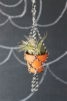 DIY: mini macrame plant hanger I'd love to have a little corner of plants somewhere in the apartment :) we could use air plants. They don't need soil or daily watering to live! Home Crafts, Diy And Crafts, Macrame Plant Holder, Mini Plants, Hanging Plants, Fun Projects, House Plants, Pots, Cactus