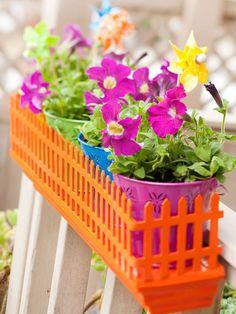 A garden of color.