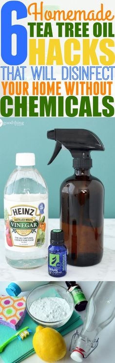 Looking for a frugal but efficient way to clean your home without using harsh chemicals? Check out these 6 homemade tea tree oil cleaners that you can easily make from home.