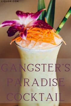 This version of a healthy Rum Colada won't make you feel guilty for having two! The Gangster's Paradise features turmeric oil that adds a slightly spicy and herbal depth to the Tiki cocktail. Refreshing Cocktails, Fun Cocktails, Cocktail Recipes, Rum Recipes, Copycat Recipes, Paradise Cocktail, Tiki Cocktail, Types Of Cocktails, Turmeric Oil