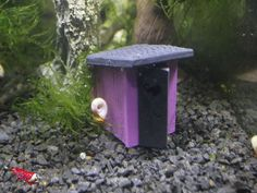 Garnelen WC - Edition Purple - Aquarium Höhle Deko Versteck