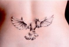 Dove tattoo styles are the foremost well-liked tattoo worn by each men and ladies. Here we present the list of 30 Dove Tattoo Designs For Girls. Best 3d Tattoos, Trendy Tattoos, Tattoos For Women, Tattooed Women, Small Tattoos, Tatoo 3d, Tattoo Son, Tattoo Bird, Tiny Tattoo