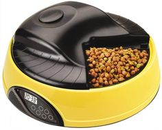 Dog automatic feeder with LCD clock