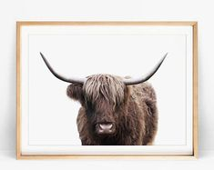 Highland Cow Print, Farmhouse Wall Decor, Modern Kitchen Decor Wall, Rustic Living Room Black and White Poster, Printable Large Cow Wall Art