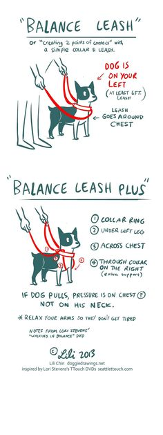 Boogie TTOUCH notes: BALANCE LEASH | Copyright 2014 Lili Chi… | Flickr