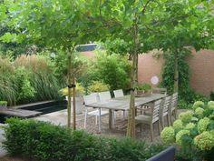Achtertuin-terras Outdoor Life, Outdoor Spaces, Outdoor Gardens, Outdoor Living, Outdoor Decor, Plant Design, Garden Design, Small Courtyards, Lush Garden