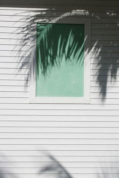 Palm shadow in white and green Summer Of Love, Summer 2014, Light And Shadow, Belle Photo, Summer Vibes, Palm Trees, Nature, Summertime, Art Photography