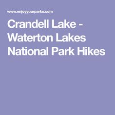 Crandell Lake Trail in Waterton Lakes National Park. Includes the Top Things To Do In Waterton Lakes National Park. Waterton Park, Waterton Lakes National Park, National Parks, Hiking, Walks, Trekking, Hill Walking