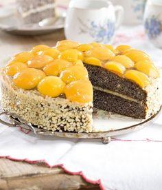 Makový koláč s meruňkami Czech Recipes, Ethnic Recipes, Tiramisu, Cheesecake, Sweets, Czech Food, Poppy, Heaven, Cakes