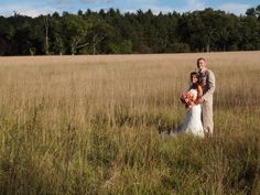 Hay field pictures