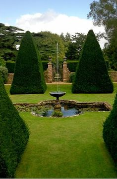 Athelhampton House Tudor garden   gardening ideas - pond and fountain, shape of trees - wonderful yew pyramids in this picture.