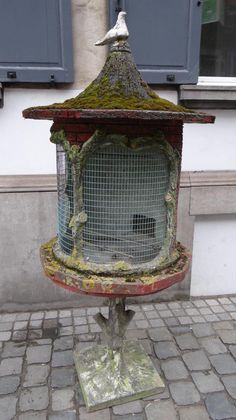 Cage à Oiseaux, Alizarine Antiquités, Proantic