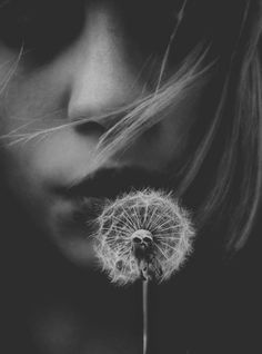 make a wish Black And White Pictures, Black N White, Dandelion Wish, Foto Art, Make A Wish, Black And White Photography, The Dreamers, Monochrome, Portrait Photography