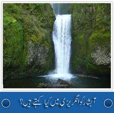 Urdu Inc (urduinc) on Pinterest