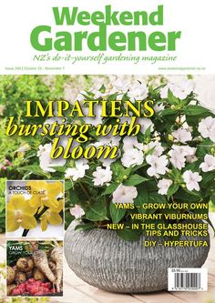 Weekend Gardener - issue 349