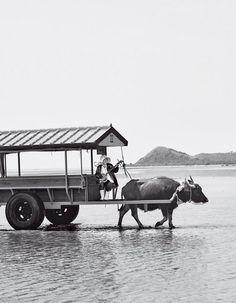 Japan's Yaeyama Islands: A Beachy Paradise That Rivals the Caribbean