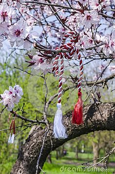 Photo about Martenica - Bulgarian National Talisman Related To The Frst Day Of Spring. Image of blossom, cherry, flowers - 39305606 8 Mars, Spring Time, Wind Chimes, Flower Arrangements, Fantasy Art, Stock Photos, Bird, Art Prints, Christmas Ornaments