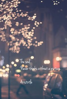 """""""The soul never thinks without a picture"""" ~Aristotle"""