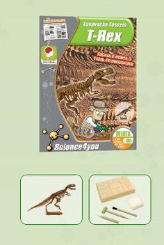 ESCAVAÇÃO FÓSSEIS - T-REX Descobre: - O que são fósseis - Qual a causa de extinção dos dinossauros - Quais as melhores técnicas de escavação - O que é a Paleontologia - Características e curiosidades do T-rex