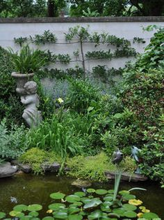 Traditional Backyard With Koi Pond and Espaliered Tree. In this traditional backyard, a tall stuccoed wall provides privacy while a koi pond is surrounded by masses of blooming shrubs and bulbs. Q Garden, Rain Garden, Water Plants, Cool Plants, Landscaping Tips, Garden Landscaping, Pond Water Features, Mosquito Repelling Plants, Spring Plants