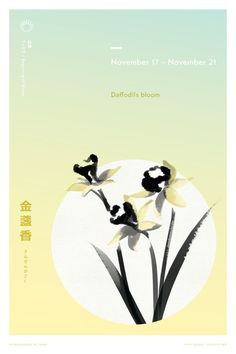 A poster project creating a unique design for each of the 72 microseasons of the ancient Japanese calendar. Japanese Ink Painting, Image Theme, Zen Style, Ancient China, Daffodils, Typography Design, Design Projects, Banana, Layout