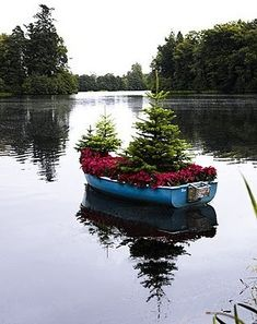 This  floating boat garden with Spruces is one of the most unique I have seen.  What a wonderful idea for pond or lakeside living.